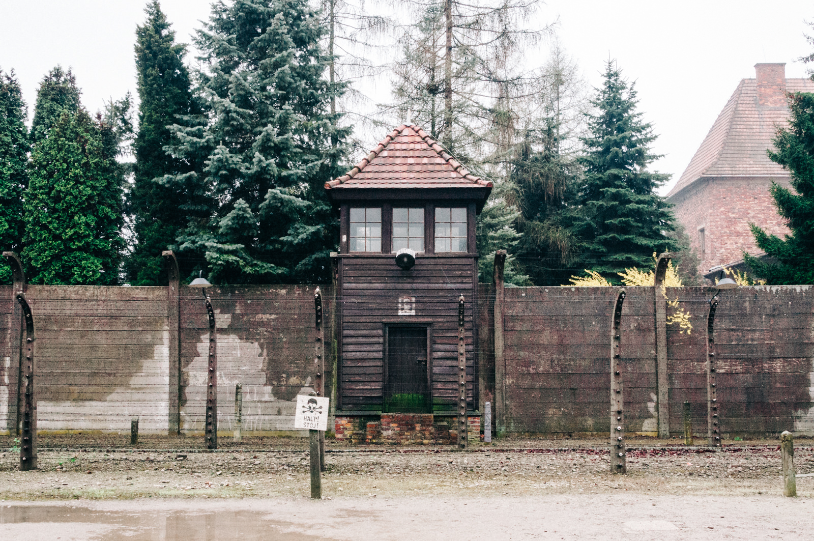 Cracovie la ville les mines de wieliczka et auschwitz - Les chambres a gaz ont elles vraiment existees ...