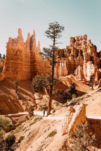 Capitol Reef, Bryce Canyon et Zion — Les parcs de l'Utah, partie2