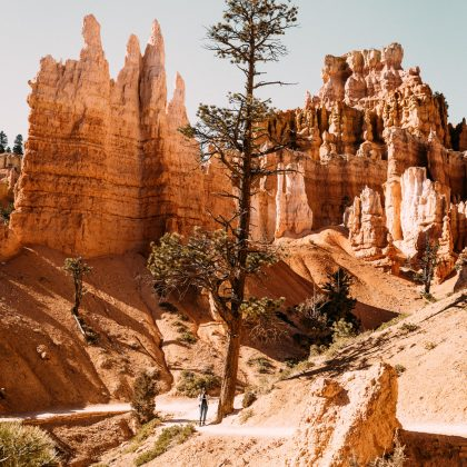 Capitol Reef, Bryce Canyon et Zion — Les parcs de l'Utah, partie 2  - Black and Wood
